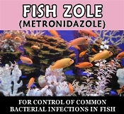 Fish Zole (Metronidozole) 250mg / 30 Ct