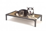 Walnut Dog Bed (INDOOR ONLY)