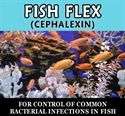 Fish Flex (Cephalexin) 250mg / 30 Ct